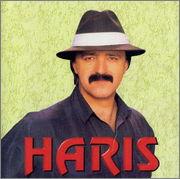 Haris Dzinovic  - Diskografija  1991_p