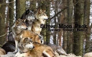Silver Moon Pack Image