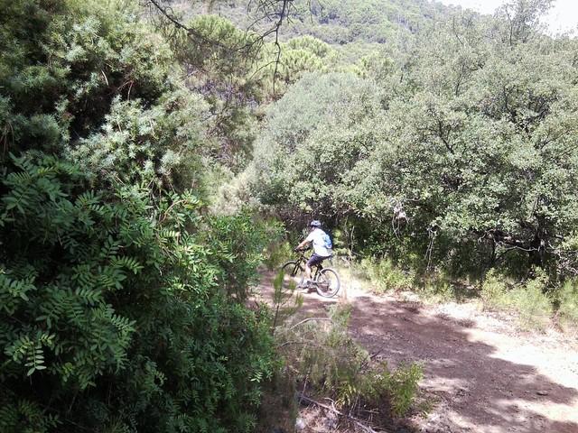 Bicis a Benahavis Foto2787
