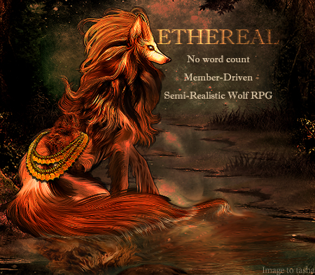 Ethereal - Semi-Realistic Wolf RP Ra_Advertisement