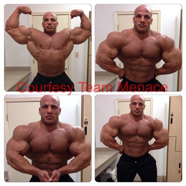 Mr. Olympia - Página 2 72325d1407794545_big_ramy_6_weeks_out_big_ramy_8