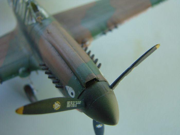 P-40E, Hobby Boss, 1/72 DSC03375