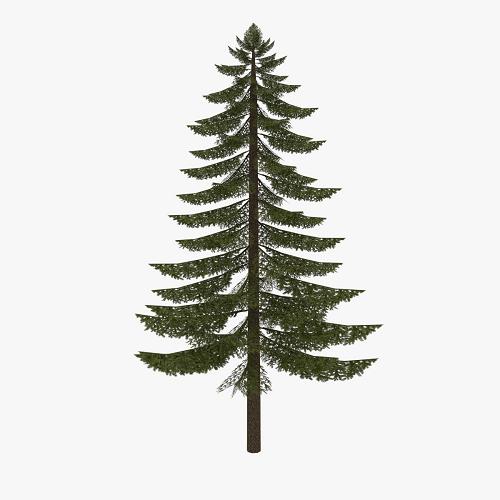 Decorate the Thread: Make A Christmas Tree! Christmas_Tree_Template