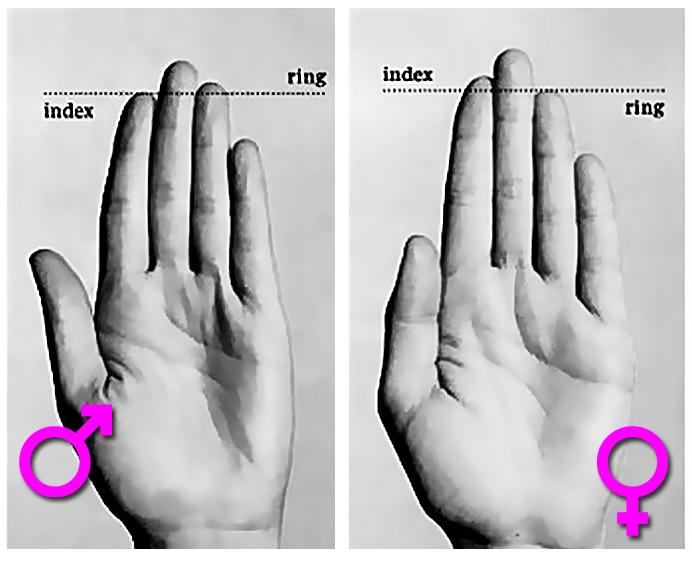 Umpolen – den Minuspol mit dem Pluspol vertauschen Finger