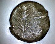Prutah de Porcius Festus (su hermana gemela) Smga_340b
