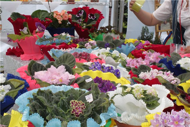 Фестиваль цветов в Алматы - «Алматы – гул кала» 3ad063fddbc0