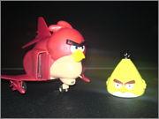 ANGRY BIRD DSC07813