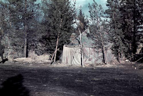 Вермахт на кандалакшском направлении - Страница 2 166410_r500