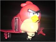 ANGRY BIRD DSC07808