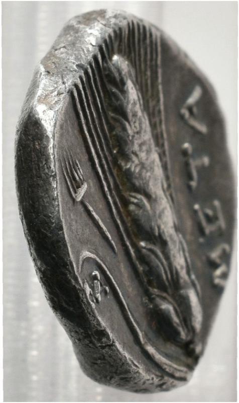 Lucania. Metapontion. Estátera (325-280 BC). De Tauler y Fau 001-16-14_01