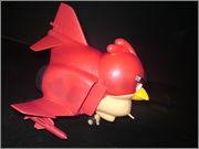 ANGRY BIRD DSC07809