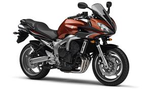 Orígen, historia y evolución | Yamaha FZ6 - Fazer 2009_FZ6_S2_Naranja