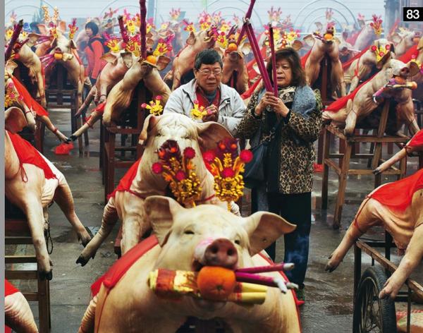 Sacrifice de porcs aux Dieux Image