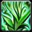 Builds pvp Ability_druid_flourish
