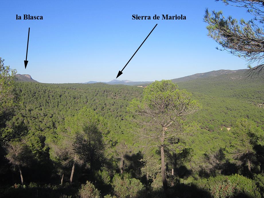 EL RECONCO,Biar + COVA NEGRA (ruta motosenderista) Biar119