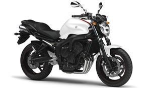 Orígen, historia y evolución | Yamaha FZ6 - Fazer 2008_FZ6_N2_Blanco