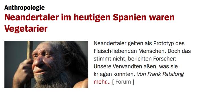 Menschen stammen NICHT vom Affen ab! Neander_01