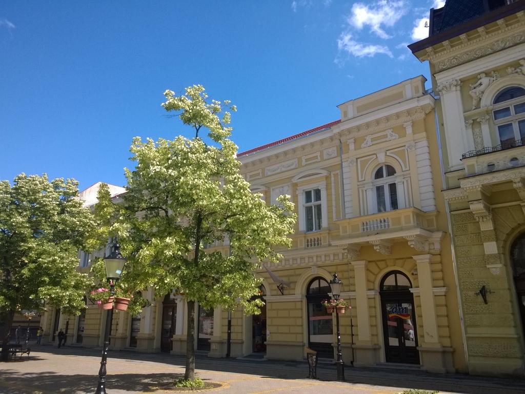 Grad Subotica - Page 4 WP_20150523_010