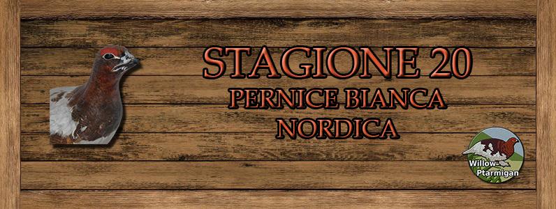 Pernice bianca nordica - ST.20 Nordica