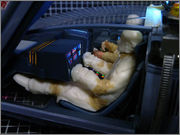 FUJIMI Police Spinner + Custom Set (Blade Runner) 26_FSpinner_DGa