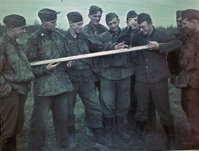 "6 дивизия СС ""Норд"" 1550104_original"