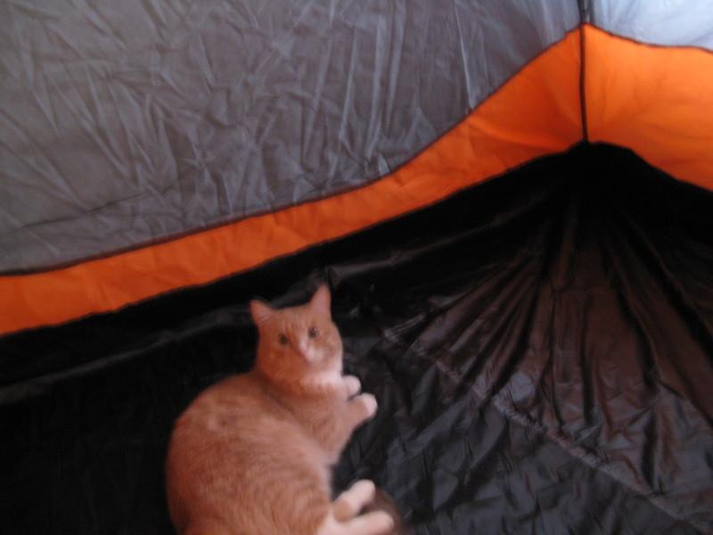 "Палатка для ""копа"" 006"
