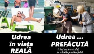 UDREA parasuta Udrea_parasuta_004