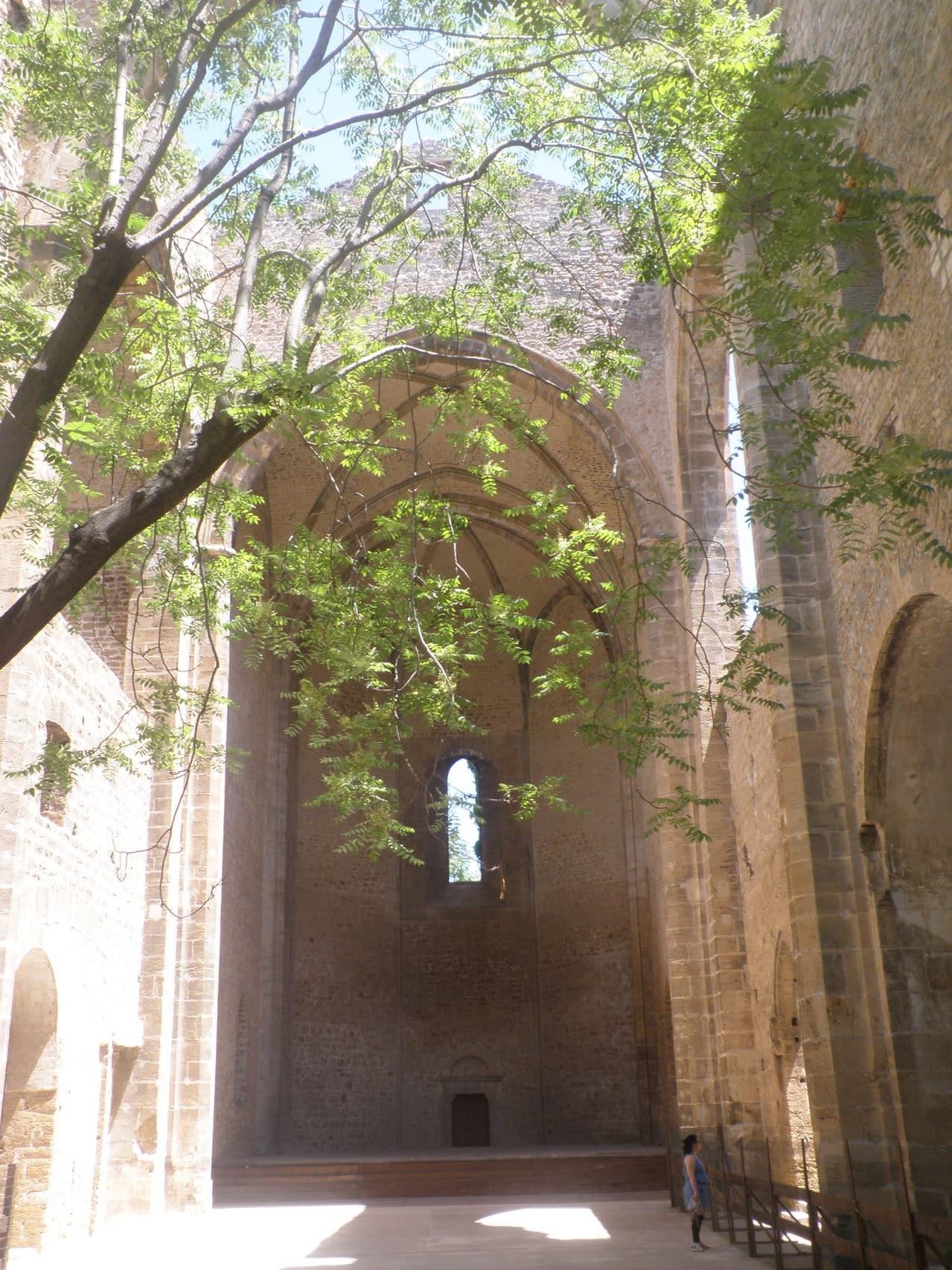 Felipe IV y el Pasmo de Sicilia. Palermo_131