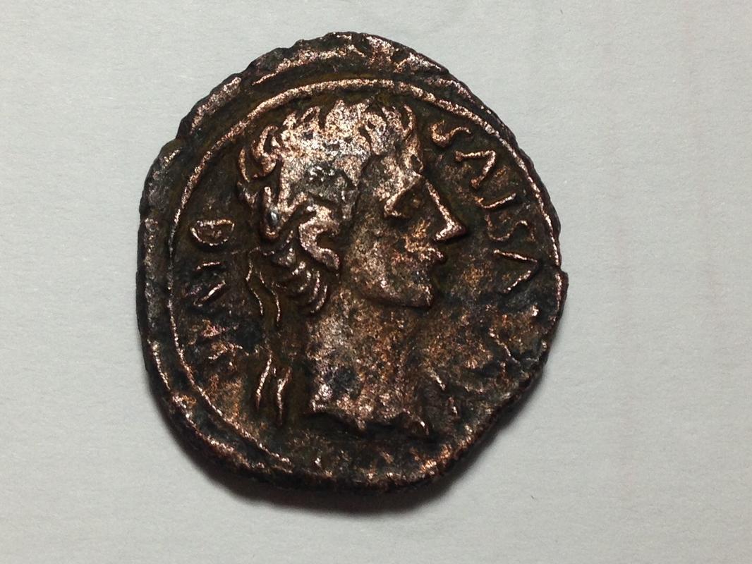 Semis de Caesaraugusta, tiempos de Augusto. CAESARAVGVSTA - M PORCI CN FAD / II - VIR. Vexilo. IMG_1848
