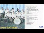 Svetozar Lazovic Gongo -Diskografija Default