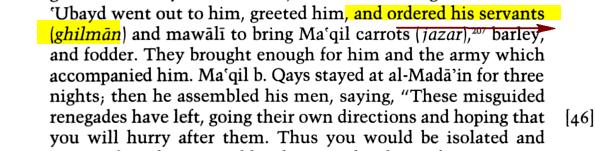 que signifie Ghilmans du Pradais Ghilman