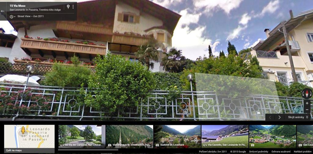 Trachycarpusy v Alpách San_Leonardo_In_Passiria_680_mnm