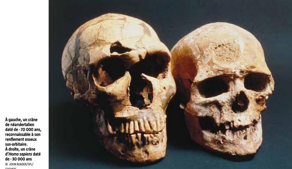 Evolutionistes reconnaissent les lacunes d évolution Image