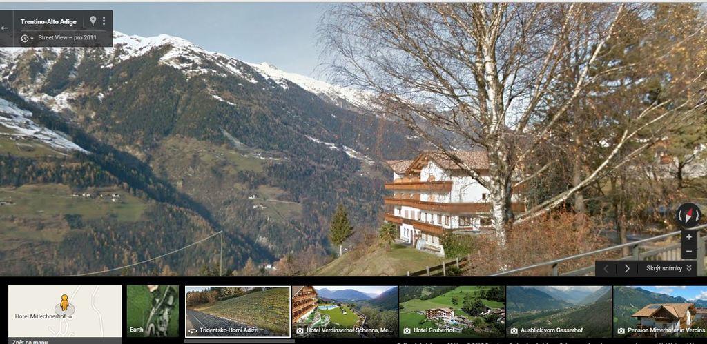Trachycarpusy v Alpách Bagni_di_verdines_830_mnm