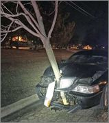 So You Think You've Had A Bad Day Roselle_police_recently_stopped_a_car_with_a_tre