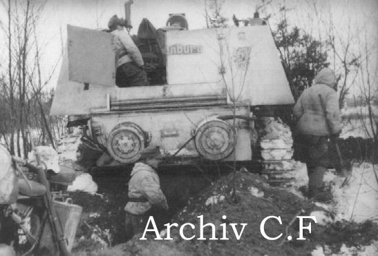 """""""Hornisse""""/""""Nashorn""""  -  принадлежность и матчасть Panzer221006"""