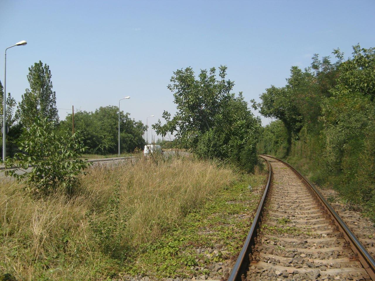 Calea ferată directă Oradea Vest - Episcopia Bihor IMG_0051
