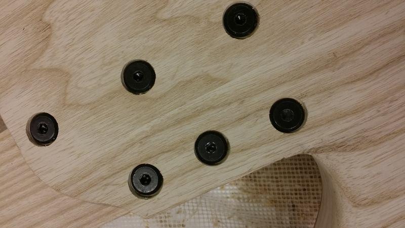 Construção caseira (amadora)- Bass Single cut 5 strings - Página 5 12415825_10153850698764874_1547247526_o