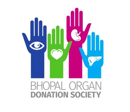 Organspende / Transplantation 33_organe_3