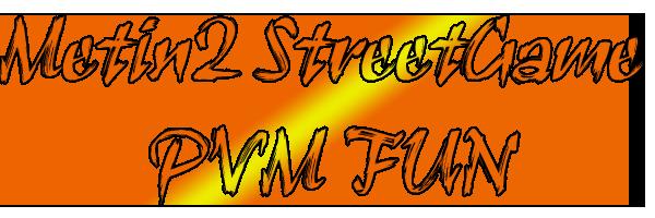 testestestest Metin2_STREET