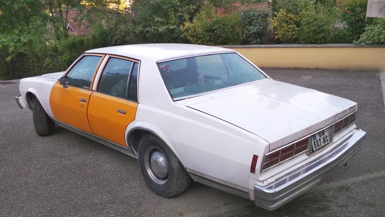 Caprice 1977 - I need your help ! IMG_20180629_080605