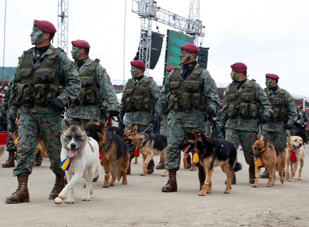 Armée Equatorienne/Fuerzas Armadas del Ecuador - Page 4 0_21
