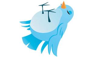 Staner BASS POWER 200W Twitter_sleeping