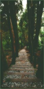 [CREAŢII] tEquiLa128 Avatar_woods
