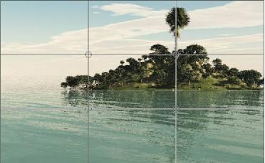 Aquarismo: Como as regras basicas de fotografia podem nos ajudar??? Sem_t_tulo2