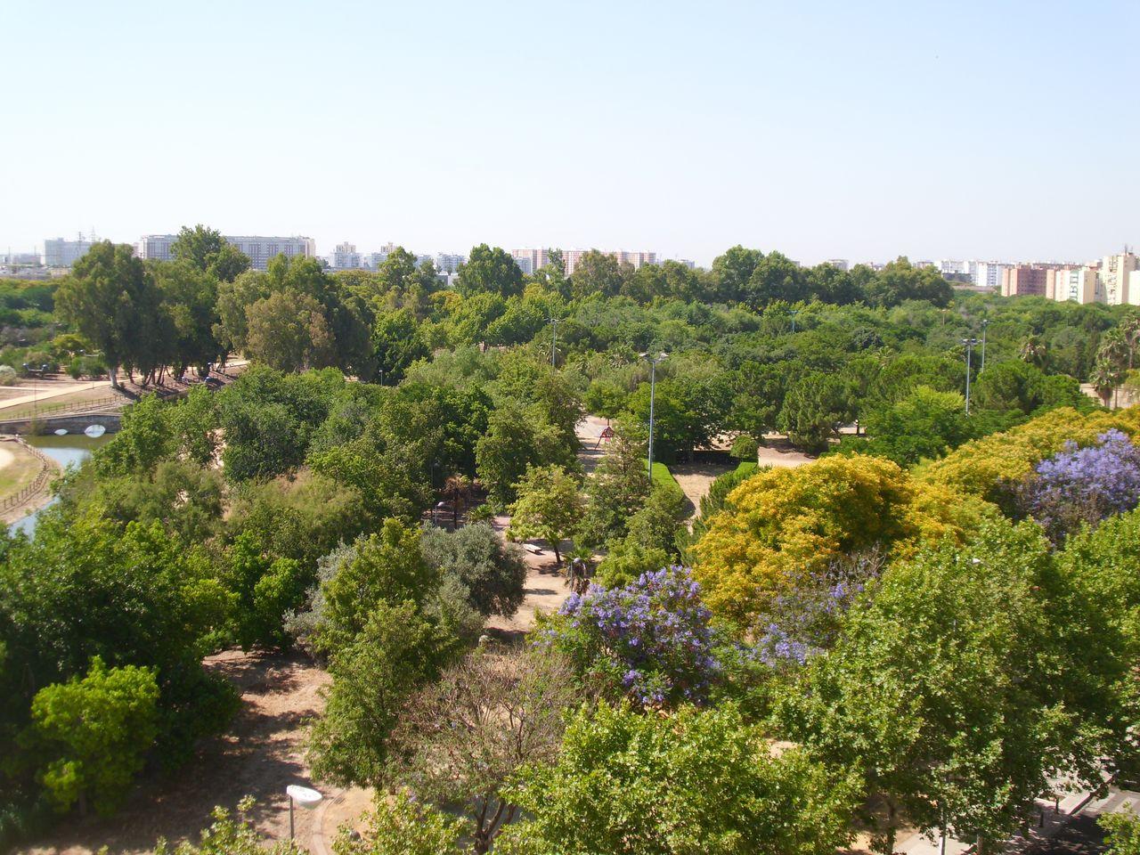 Parque de Miraflores (Sevilla). IMG_0092