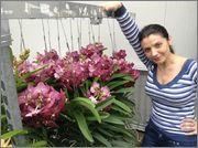 Aranjamente cu orhidee si nu numai ;)  Image