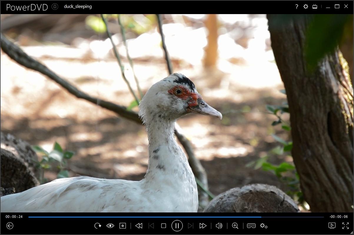 CyberLink PowerDVD Ultra 17.0.2101.62 Multilingual Screenshot_20170619_140925