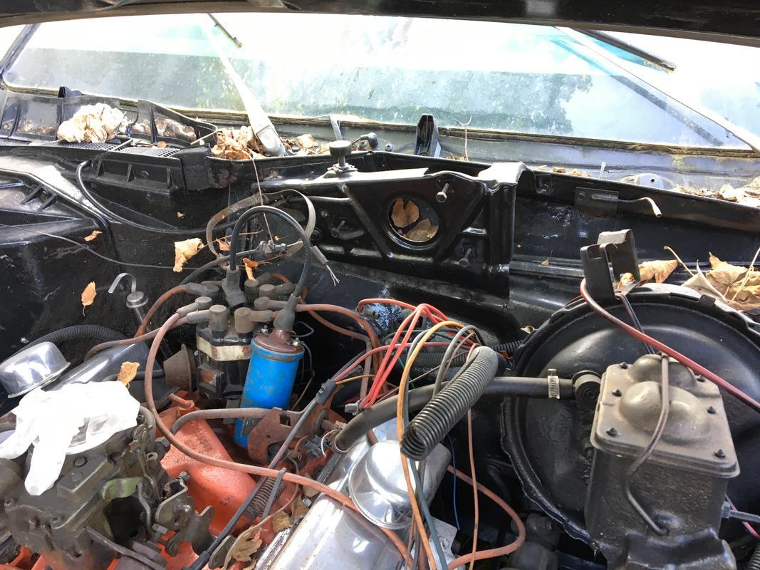 Caprice 1977 - I need your help ! IMG_0307