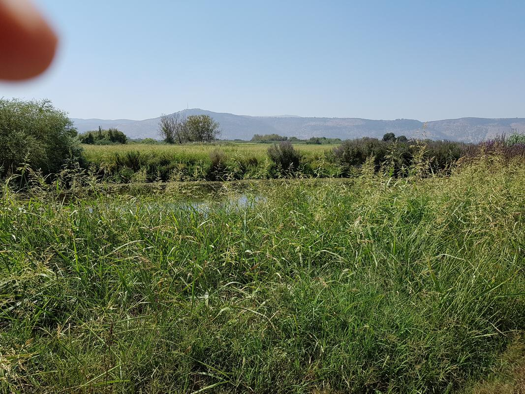 trip walkthrough : israel hula lake nature reserve 20180904_132431